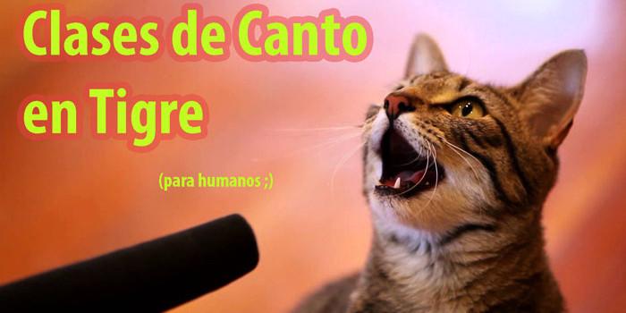 Clases de Canto en Tigre