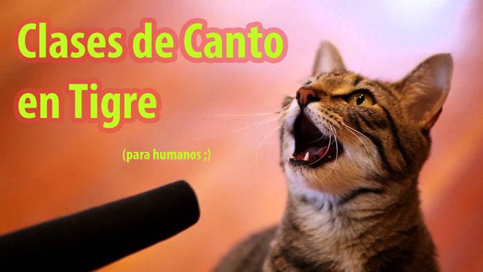 clases-de-canto-en-tigre