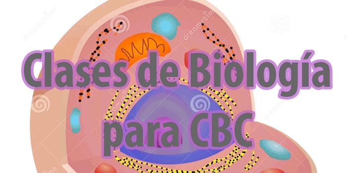 Clases de Biología para CBC en Zona Norte